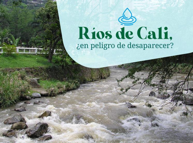Ríos de Cali, ¿en peligro de desaparecer?