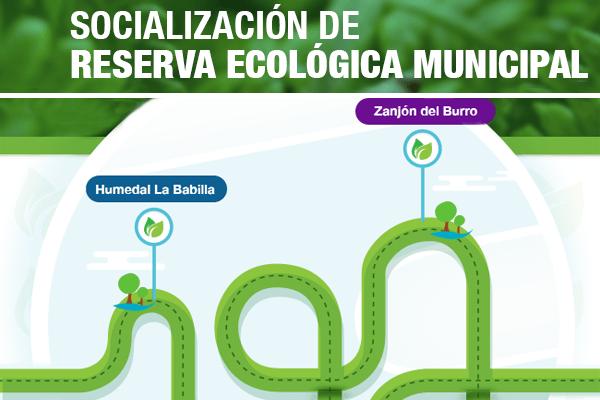 Conoce sobre la reserva ecológica municipal