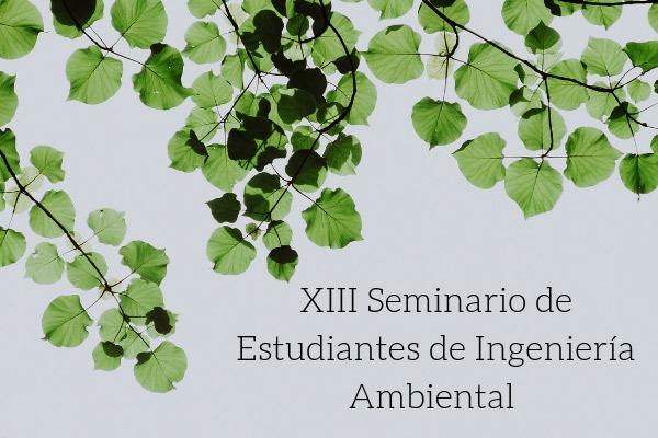 seminario-ing-ambiental